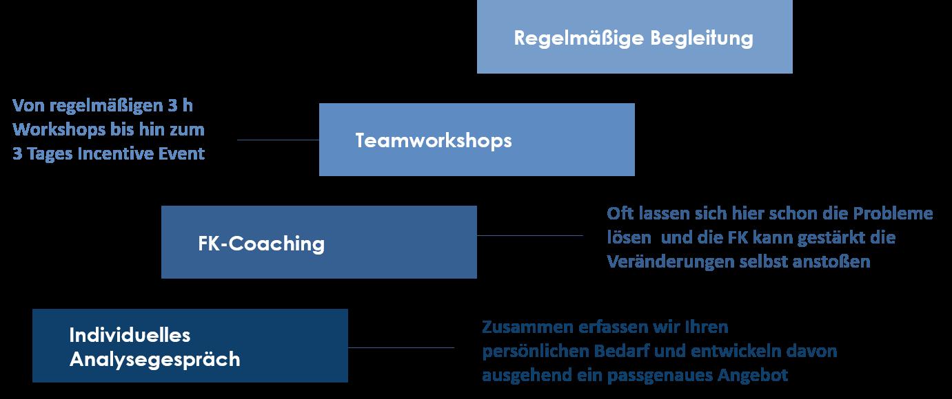 individuelles-analysegespräch-teamworkshop-regelmäßige-begleitung